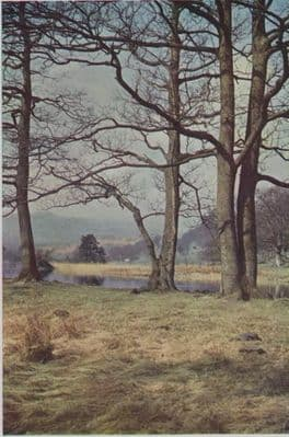 SUSSEX 1952: POYNINGS. THE DEVIL'S DYKE. South Downs. Fine Landscape View.