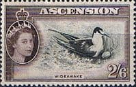 Ascension 1956 Queen Elizabeth II Wideawake Bird SG 67 Fine Mint