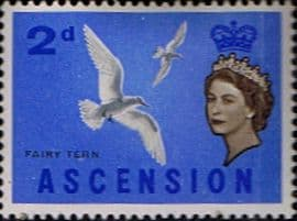 Ascension 1963 Queen Elizabeth II Birds SG 72 Fine Mint