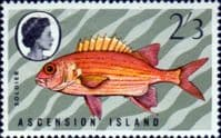 Ascension Island 1970 Fish SG 129 Fine Mint