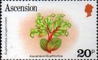 Ascension Island 1981 Flowers SG 291A Fine Mint