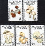 Ascension Island 1983 Fungi Set Fine Mint