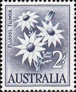 Australia 1959 SG 323 Flowers Flannel Flower Fine Mint