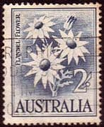 Australia 1959 SG 323 Flowers Flannel Flower Fine Used