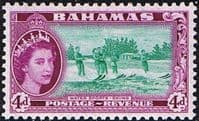Bahamas 1954 Water Sports Skiing SG206 Fine Mint