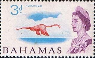 Postage Stamps of Bahamas 1965 SG 251 Greater Flamingo Fine Mint Scott 208
