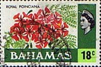 Bahamas 1971 Royal Poinciana SG 371 Fine Used