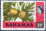 Bahamas 1976 Breadfruit SG 467 Fine Used