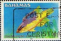 Bahamas 1986 Fish Spanish Hogfish SG 769A Fine Used