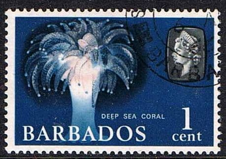 Stamps of Barbados 1966 QE II SG 342 Marine Life Deep Sea Coral Fine Used Scott 267a