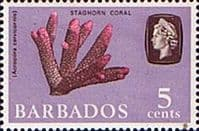 Barbados 1966 QE II SG 346 Marine Life Staghorn Coral Fine Mint