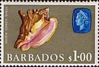 Barbados 1966 QE II SG 354 Marine Life Queen or Pink Conch shell Fine Mint
