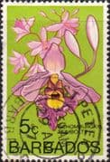 Barbados 1974 Orchids SG 489 Fine Used