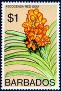 Barbados 1974 Orchids SG 497 Fine Mint