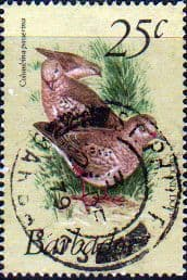 Barbados 1979 Birds SG 629 Fine Used