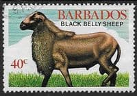 Barbados 1982 Black Belly Sheep SG 693 Fine Used