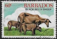 Barbados 1982 Black Belly Sheep SG 895 Fine Used