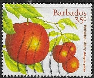 Barbados 1997 Local Fruits SG 1116 Fine Used