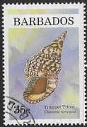 Barbados 1997 Shells SG 1108 Fine Used