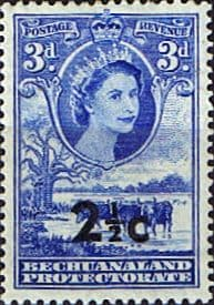 Bechuanaland 1961 Queen Elizabeth Baobab Tree and Cattle Decimal Surcharge SG 160 Fine Mint