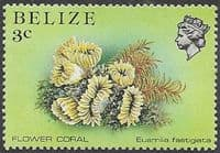 Belize 1984 Marine Life from Coral Reef SG 768 Fine Mint