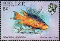 Belize 1984 Marine Life from Coral Reef SG 770 Fine Mint