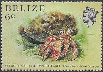 Belize 1984 Marine Life from Coral Reef SG 771 Fine Mint