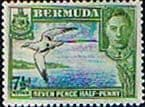 Bermuda 1938 King George VI SG 114b Coat of Arms and Flower Fine Mint