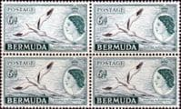 Bermuda 1953 Queen Elizabeth SG 143 White-tailed Tropic Bird Fine Mint Block of 4