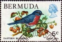 Bermuda 1978 Wildlife SG 389 Fine Used