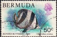 Bermuda 1978 Wildlife SG 399 Fine Used