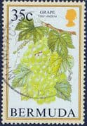 Bermuda 1994 Flowering Fruits SG 709A Fine Used