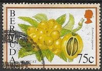Bermuda 1994 Flowering Fruits SG 712A Fine Used