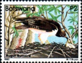 Botswana 1982 Birds Buzzard SG 532 Fine Mint
