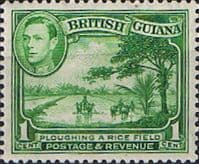 British Guiana 1938 King George VI SG 308a Ploughing Rice Field Fine Mint