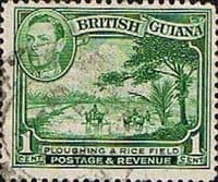 British Guiana 1938 King George VI SG 308a Ploughing Rice Field Fine Used