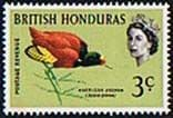 British Honduras 1962 Birds SG 204 Fine Mint