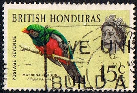 British Honduras 1962 Birds SG 208 Fine Used