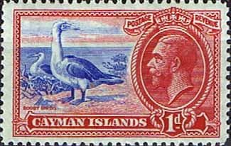 Cayman Islands 1935 King George V Head and Bird Red-footed Booby SG 98 Fine Mint