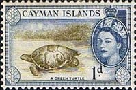 Cayman Islands 1953 SG 150 Green Turtle Fine Mint