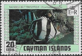 Cayman Islands 1979 Fishes SG 487 Fine Used