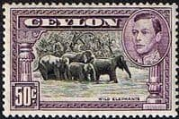 Ceylon 1938 King George VI SG 394 Wild Elephants Fine Mint