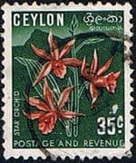 Ceylon 1951 SG 424 Flower Star Orchid Fine Used