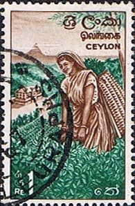 Ceylon 1964 SG 497 Tea Plantation Fine Used