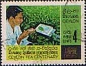 Ceylon 1967 Centenary of Ceylon Tea Industry SG 526 Fine Used