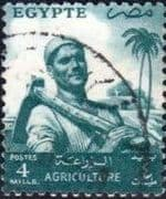 Egypt 1954 Agriculture SG 498 Fine Used
