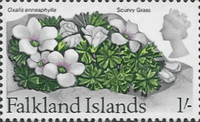 Falkland Islands 1968 Flowers SG 240 Scurvy Grass Fine Mint