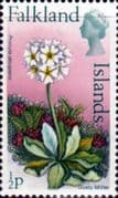 Falkland Islands 1972 Decimal Flowers SG 276 Dusty Miller Fine Mint