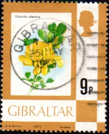 Gibraltar 1977 Birds, Flowers, Fish and Butterflies SG 382 Fine Used