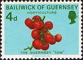 Guernsey 1970 Agriculture and Horticulture SG 36 Fine Mint